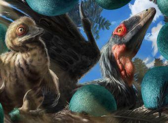 Silli dinosaurët në dhomën tënde me flitrin AR të National Geographics